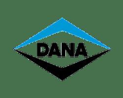 DANA-3D Scanning